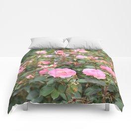 Baby Pink Rosebud Comforters