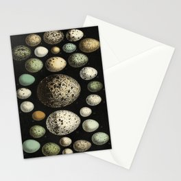 Naturalist Eggs Stationery Cards