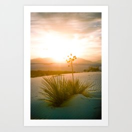 white sands sunset 2 Art Print