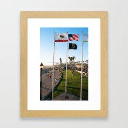 Waving Flags Framed Art Print