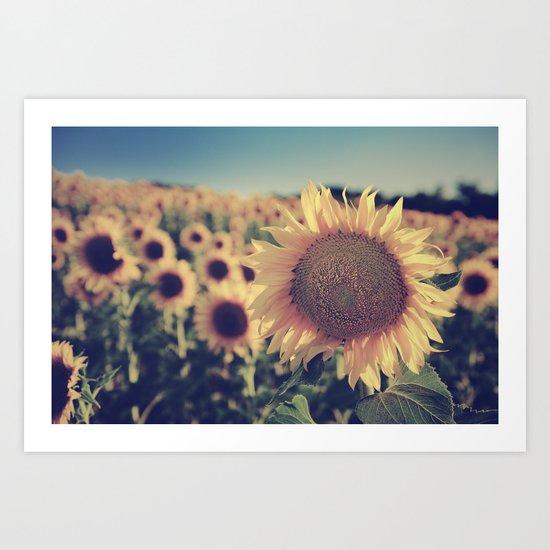 """Sunflowers"" Vintage dreams Art Print"