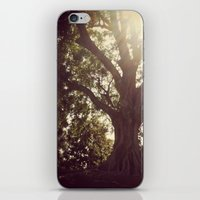 botanical iPhone & iPod Skins featuring Botanical by radiantlee