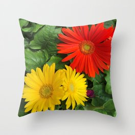 Colorful Daisies Throw Pillow
