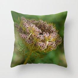 Stunning closeup of a flower Throw Pillow