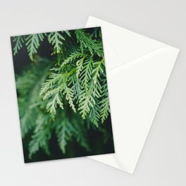 Christmas Green Stationery Cards