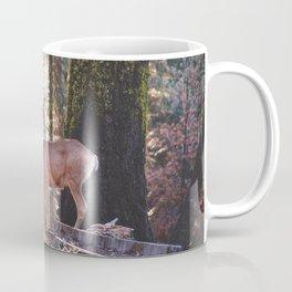 Mule Deer Coffee Mug