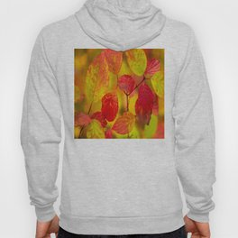 Red autumn leaves #decor #society6 Hoody