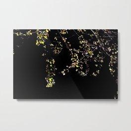 leaves in the moonlight Metal Print