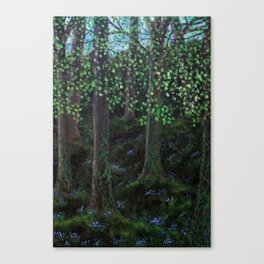 The Fresh Green Leaves of Spring Canvas Print