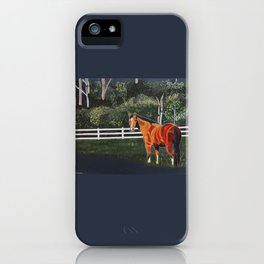 In a Field iPhone Case