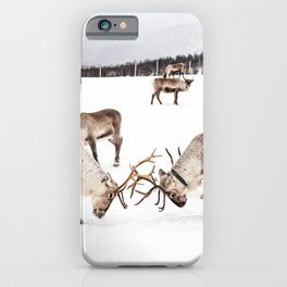 Playing Reindeers In Snow In Tromsø | North Of Norway Photo | Travel Photography Art Print iPhone Case