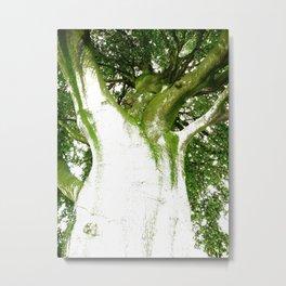 The Tree Giant Metal Print