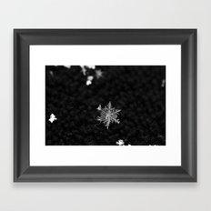 Snowflake of night Framed Art Print