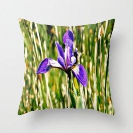 Wild iris on Seal Island, Nova Scotia Throw Pillow