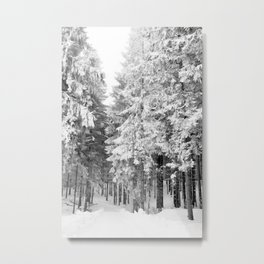 Snow Covered Pine Trees Winter Woodland Metal Print