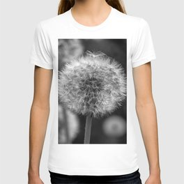 Monochromatic dandelion on black T-shirt