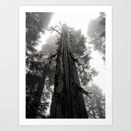 This Thing is a spooky tree Art Print