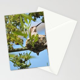 Hanging Out Over B Street Stationery Cards