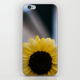 Tournesol iPhone Skin