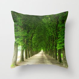 The gardens of the castle of Fontainebleau Throw Pillow