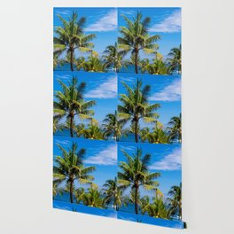 Looking at top of palm trees Wallpaper