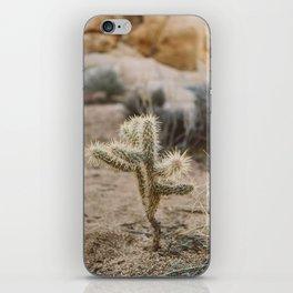 Joshua Tree National Park XVI iPhone Skin