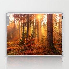 The Golden Hour (Color) Laptop & iPad Skin
