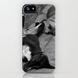 Greek Dogs iPhone Case