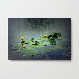 lily pads in the rain at Vernonia Lake Metal Print