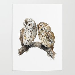 Two owls Poster