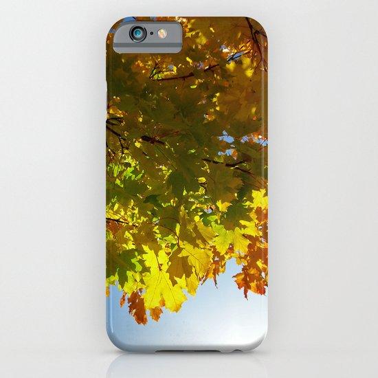 autumn tree III iPhone & iPod Case