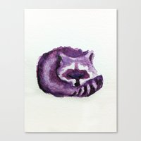raccoon Canvas Prints featuring raccoon by carrie booth