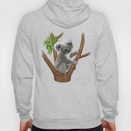 Blue-eyed Baby Koala Bear Hoody