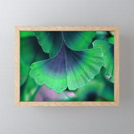Ginkgo leaf Framed Mini Art Print