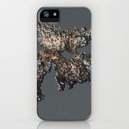 Döner Kebab iPhone Case