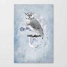 Owl Theory Canvas Print