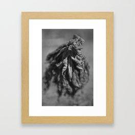 Dancing Lettuce Framed Art Print