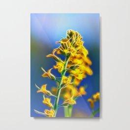 Brassica Rapa Metal Print