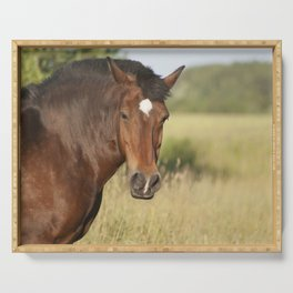 Brown horse portrait Serving Tray
