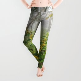 Smoky Mountain National Park -  Wildflower Foggy Forest Leggings