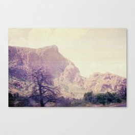 Passing through Terlingua Canvas Print
