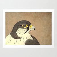 falcon Art Prints featuring Falcon by Lynette Sherrard Illustration and Design