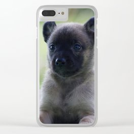 A yellow Shepherd puppy Spok Clear iPhone Case