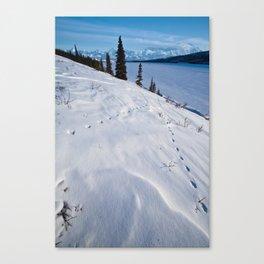 Wonder Lake, Denali National Park Canvas Print