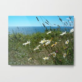 Cape Split flowers Metal Print