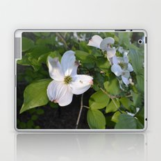 Dogwood wall Laptop & iPad Skin