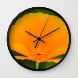 California Poppy close up by Teresa Thompson Wall Clock
