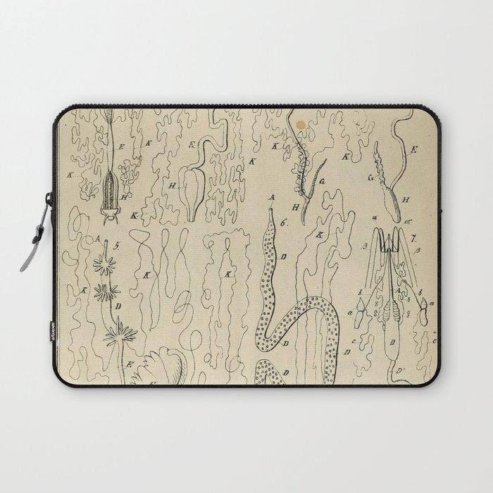 Microscopic Biology Laptop Sleeve