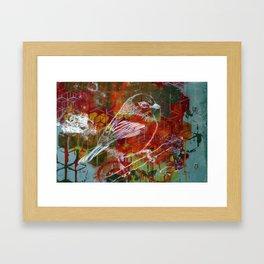 Sparrow Graffiti Framed Art Print
