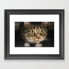 Green Scarf  Framed Art Print